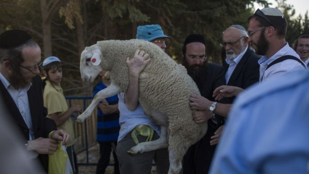 Activists barred from sacrificing sheep near Temple Mount