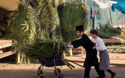 Sukkot 2016 Celebration Event Schedule